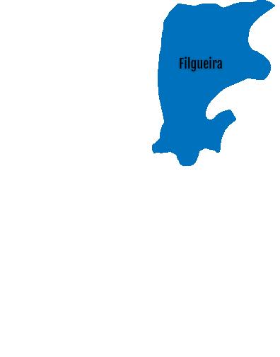 Filgueira